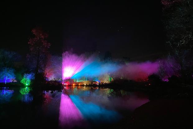 Cameo_illuminated-gardens_Royal-Horticultural-Society_10