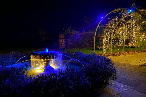 Cameo_illuminated-gardens_Royal-Horticultural-Society_12