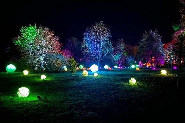 Cameo_illuminated-gardens_Royal-Horticultural-Society_7